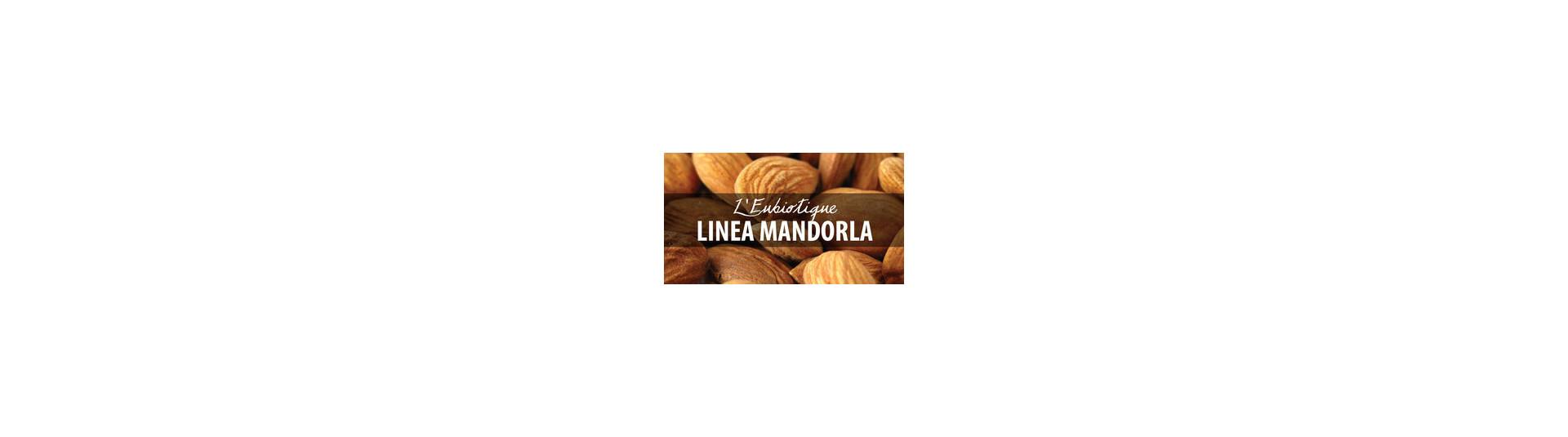 Linea Mandorla